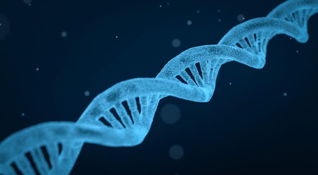 Forskere opdager genvarianter, der er skyld i nærsynethed